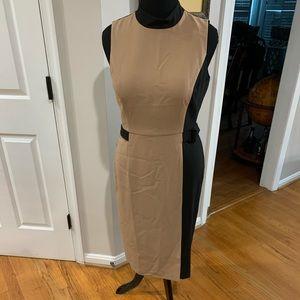 Classy, 2-tones, WHBM Sz 12 sheath dress.
